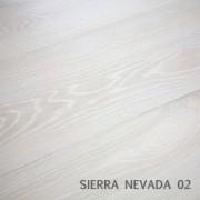 SIERRA NEVADA 02
